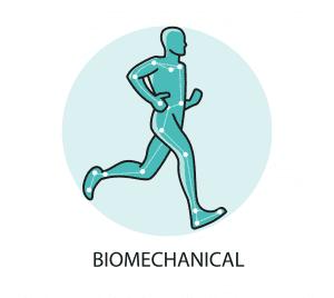 biomechanic